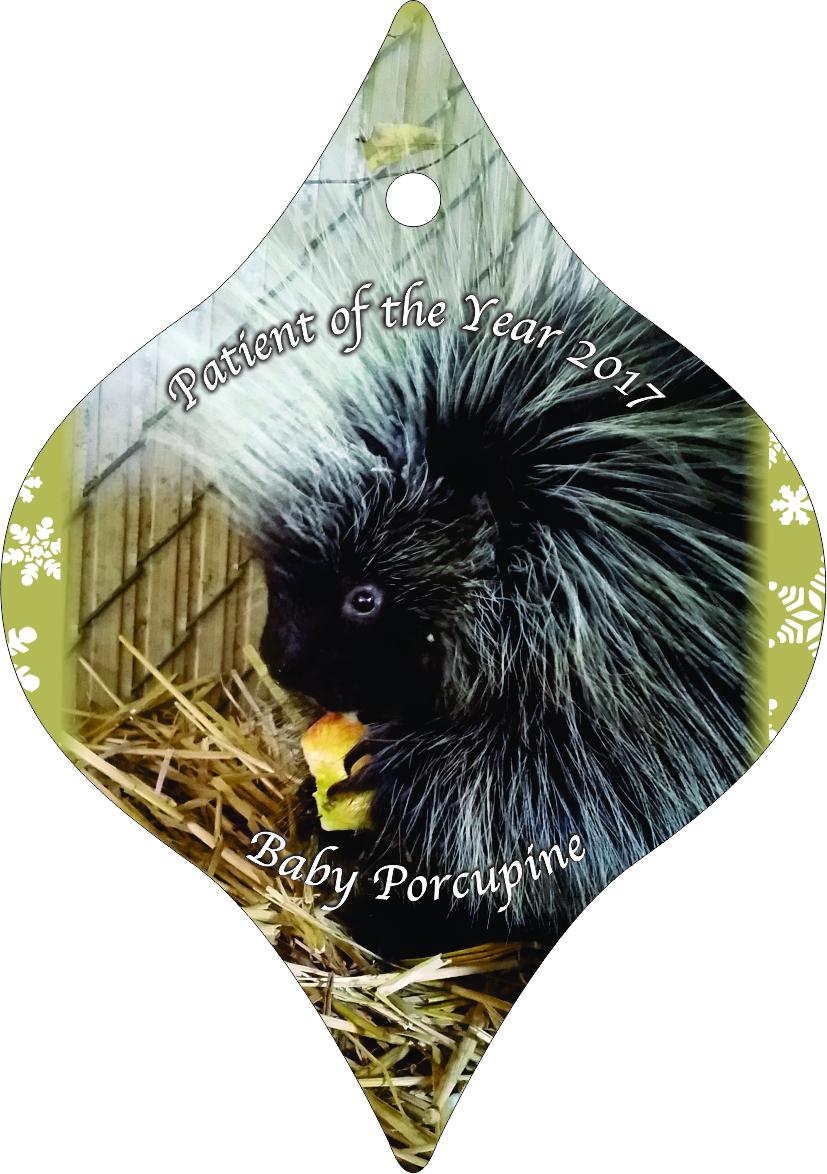 Ornament 2017 front