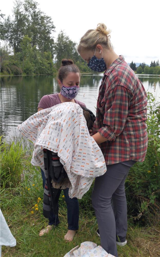 Bald Eagle Rescue Lake 2020
