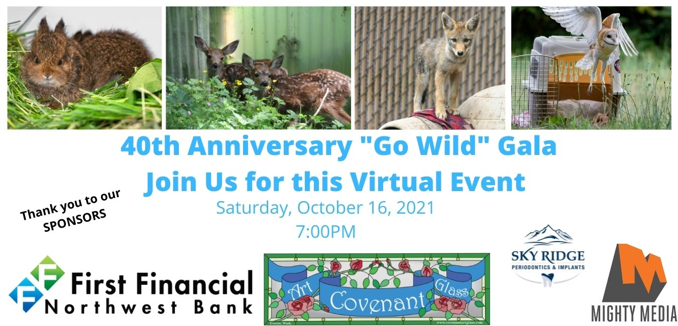 Welcome to our 40th Anniversary Celebration